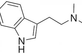 DMT molectule